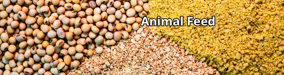 animal-feed-ban